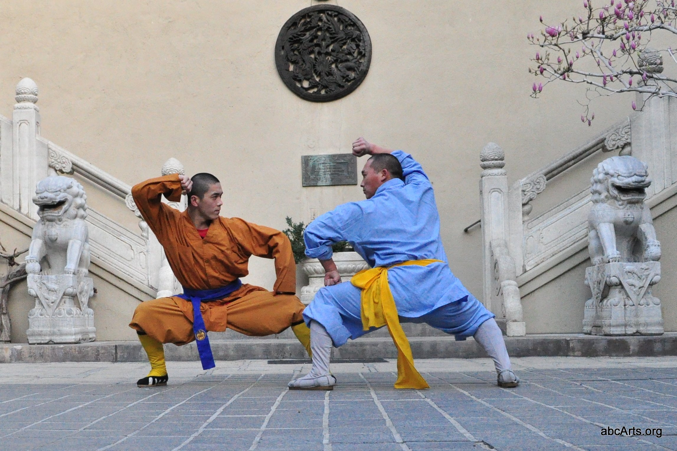 a report on martial arts in asia Martial arts originated in east asia more than 2,000 years ago and have since grown to about 200 individual types practiced by about 100 million people worldwide.